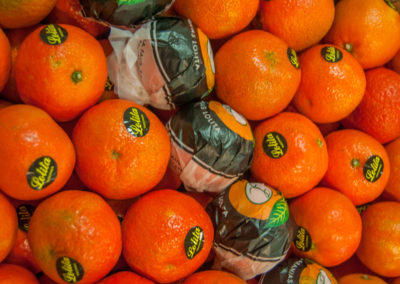 mandarinas_buscar_guadalajara