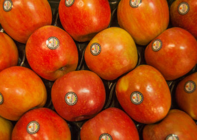 manzanas_bucar_guadalajara