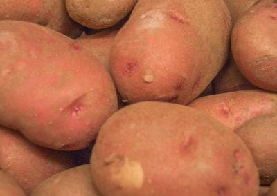 patatas_bucar_guadalajara