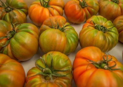 tomates1_bucar_guadalajra