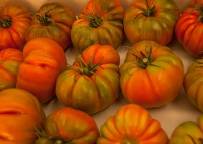 tomates2_bucar_guadalajara