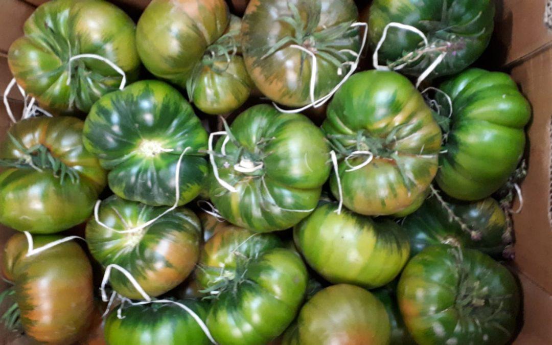 Tomates Raf Auténticos en Frutas Bucar